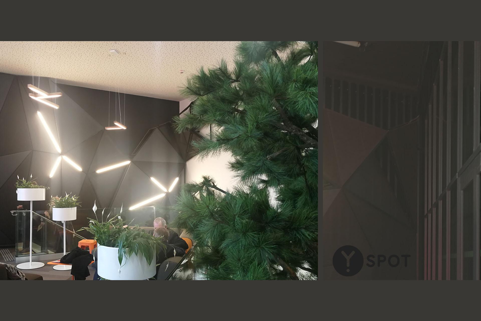 3 Y Spot Labs Convivialité